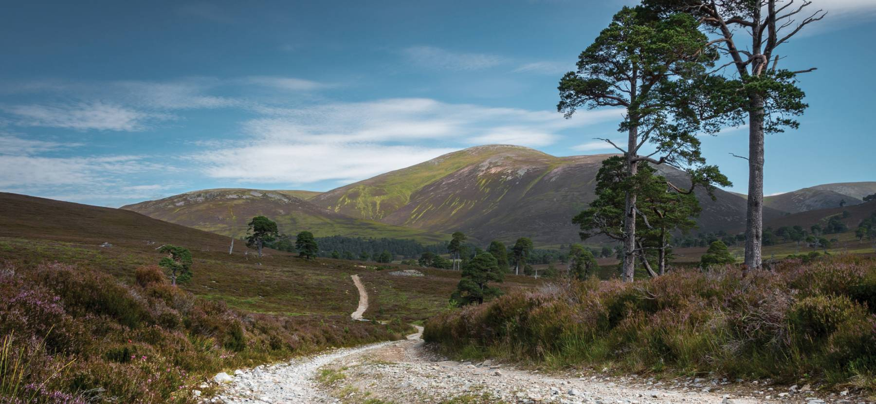 Mar Lodge Estate - National Trust for Scotland