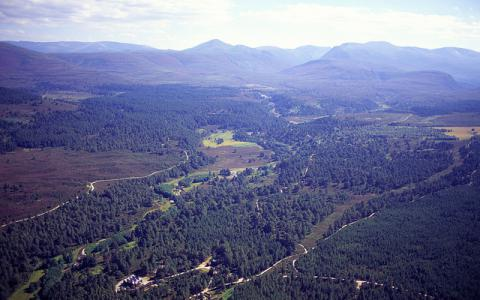 An aerial view south over the Cairngorms from above the RSPB's Abernethy Forest reserve. Glenmore, Cairngorm.  ©P&A Macdonald/SNH