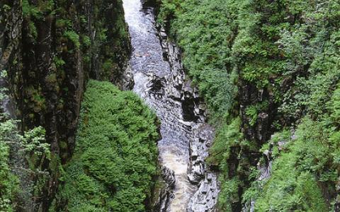 Corrieshalloch Gorge NNR - looking into the gorge