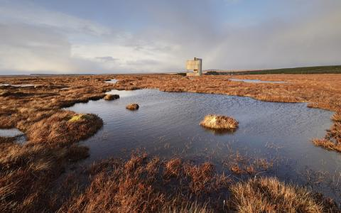 Dubh lochans on the blanket bog at Forsinard Flows National Nature Reserve.  :copyright:Lorne Gill/SNH